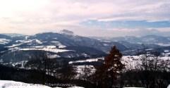 TAMOiOVDE-Planine-J.Kučaj-100_8280