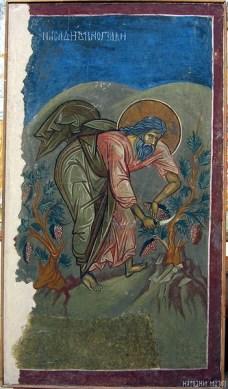 38-Noje-obrađuje-vinograd-Dečani-oko-1350.-godine