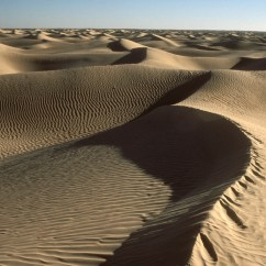 Types Of Sand Dunes Diagram Use Case Visio Template Chapter 2 Geomorphology