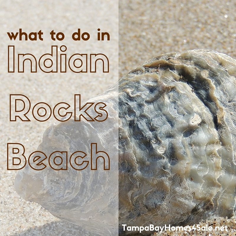 what to do in indian rocks beach - indian rocks beach homes for sale