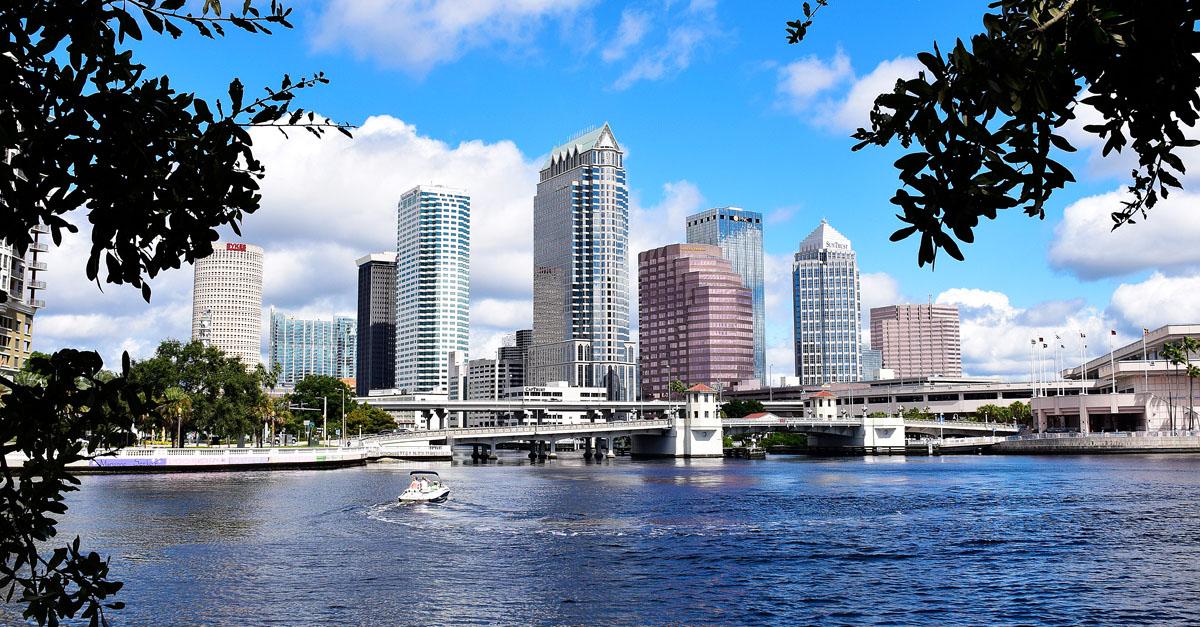 Tampa bay seo