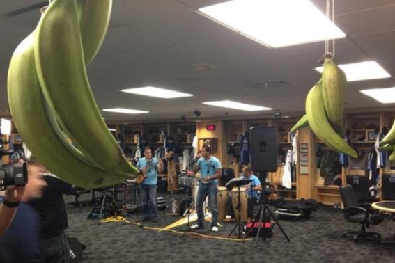 Joe Maddon does it again. Yes that is a Latin band, and yes those are plantains hanging in the clubhouse. (Photo courtesy of Marc Topkin/Tampa Bay Times)