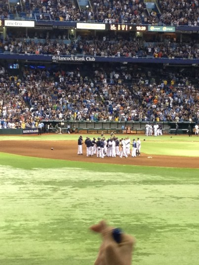 Do the bounce! The Rays mobbed Wil Myers after he hit the game winning single to center.