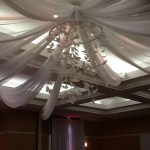 butterfly theme ceiling drape