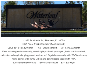 Waterleaf Riverview Florida 33579