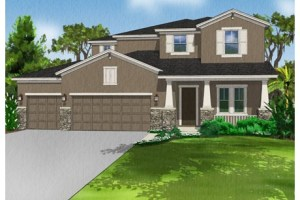 OAK RANCH THONOTOSASSA FLORIDA - NEW CONSTRUCTION