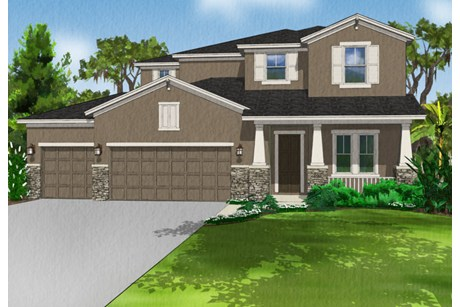 OAK RANCH THONOTOSASSA FLORIDA - NEW CONSTRUCTION