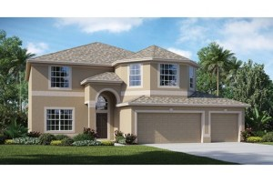 Riverview Florida Internet New Home Consultant
