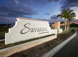 New Homes By Live Chat, Text, Or Email, Savanna At Lakewood Ranch