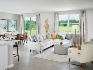 Read more about the article Bristol Meadows New Home Community  Zephyrhills Florida