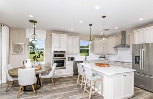 Summitview New Home Community Dover Florida