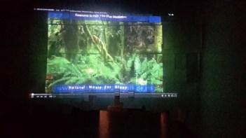 """""""200 papeles o la nostalgia de la selva"""""""