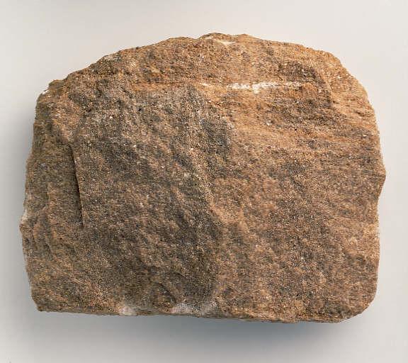 Gambar batuan ssedimen  tanaangga