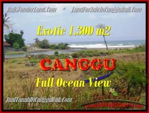 JUAL TANAH di CANGGU 13 Are View sawah dan laut lingkungan villa