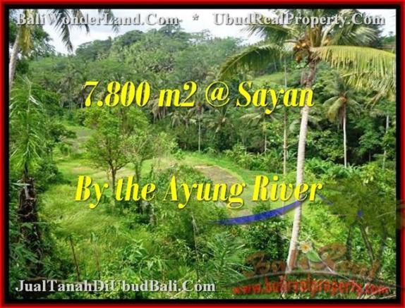 JUAL MURAH TANAH di UBUD 78 Are View tebing,sawah,sungai ayung