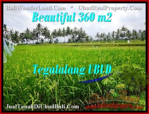 JUAL TANAH MURAH di UBUD 360 m2  View sawah link villa