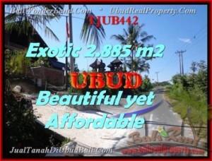 INVESTASI PROPERTI, TANAH di UBUD BALI DIJUAL TJUB442