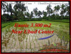 DIJUAL TANAH MURAH di UBUD 3,500 m2 di Ubud Tegalalang