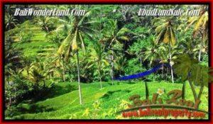 TANAH di UBUD BALI DIJUAL MURAH 2,500 m2  View Tebing,sawah Link Villa