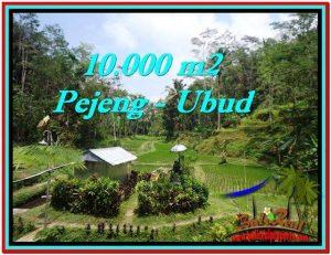 JUAL MURAH TANAH di UBUD BALI 100 Are View Sawah, Kolam, Pancoran
