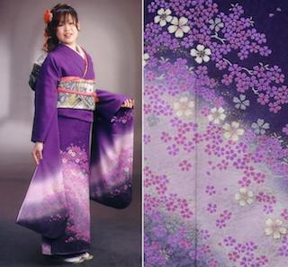 江戸紫の振袖でグラデーションと桜柄が入った成人式の振袖画像