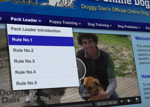 Heard of Doggy Dan?