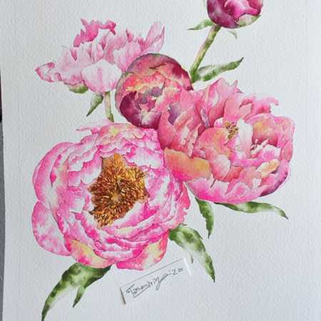 Flower Watercolor Painting Timelapse – Peony