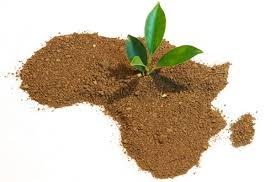 Innovating for Africa's growth is a global Imperative