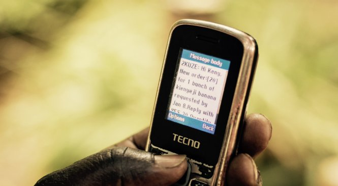 Digital technology aiming to empower small-farm owners in east Africa
