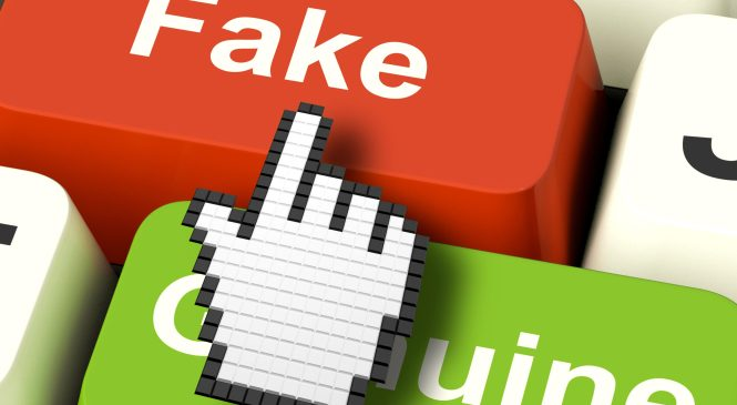 Cyber fraud exacerbated by fake apps-CA Report