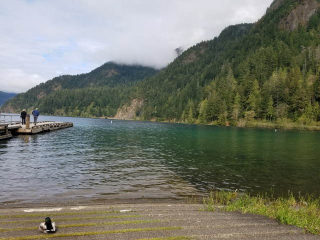Crescent Lake in Olympic National Park - view of a dock, a duck, and cloudy mountains