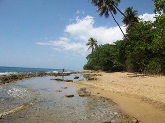 Steps Beach