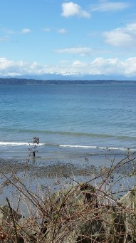 Puget Sound and snowcaps in the distance