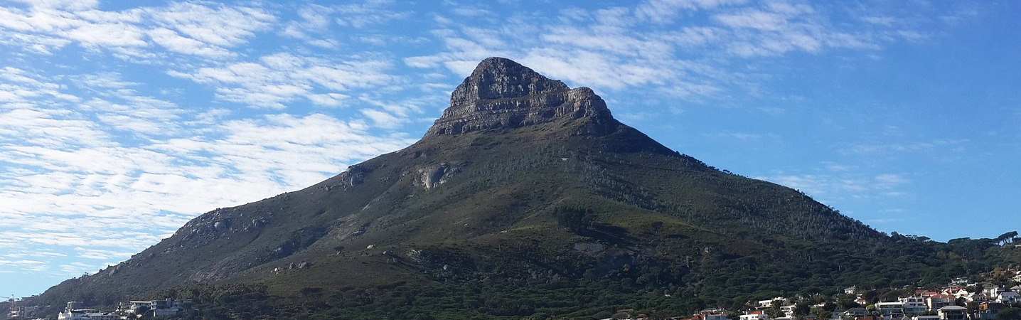 lion's head accompanied walks