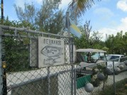 Where we bought our locally-caught grouper