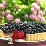 pita od borovnica i vanilije