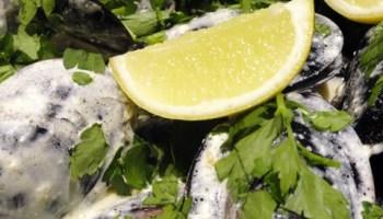 Pernod Mussels