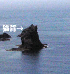 礼文島 猫岩 拡大