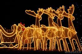 xmas reindeer lit