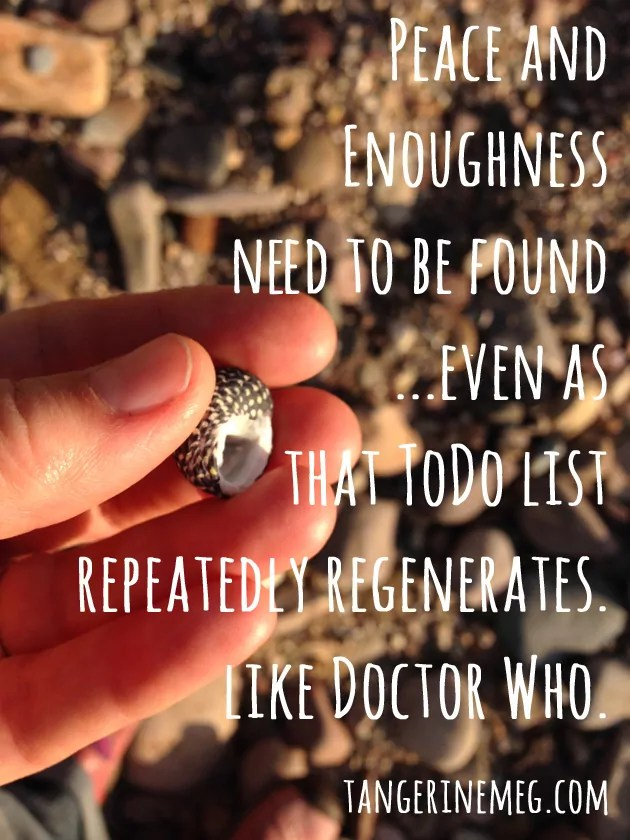 shell_enoughness-quote
