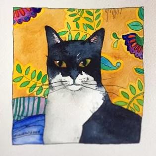24-50-black and white cat cassie