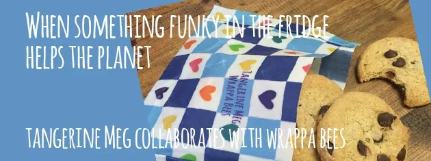 """Header image for """"When Something Funky in the Fridge Helps the Planet?"""" featuring cookies spilling out of a wrappa bees reusable wrap fashioned into a pocket"""