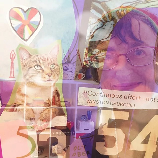 Photo collage including: Tangerine Meg's smiling face, a cat, the numbers 53 and 54, and a radial decorated heart.