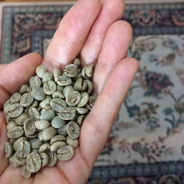 a hand holding green coffee beans in the foreground, with a patterned rug out of focus in the background