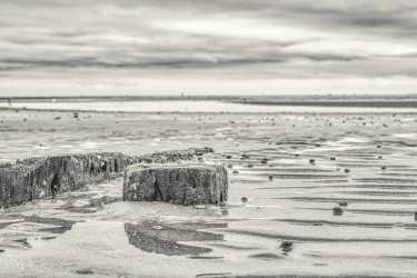 Black and White Photography: At the Beach