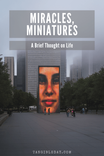 miracles and miniatures - life in miniature