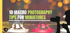 10 Tips for Macro Photography of Miniatures (an Easy Guide)