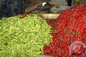 Mendag Dapat Laporan  Cabai Berbakteri Patek di Pasar Kramat Jati