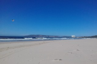 It was the perfect day to go for a long walk on the beach.