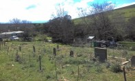 Apparently this is one of four graveyards in Tesselaarsdal.
